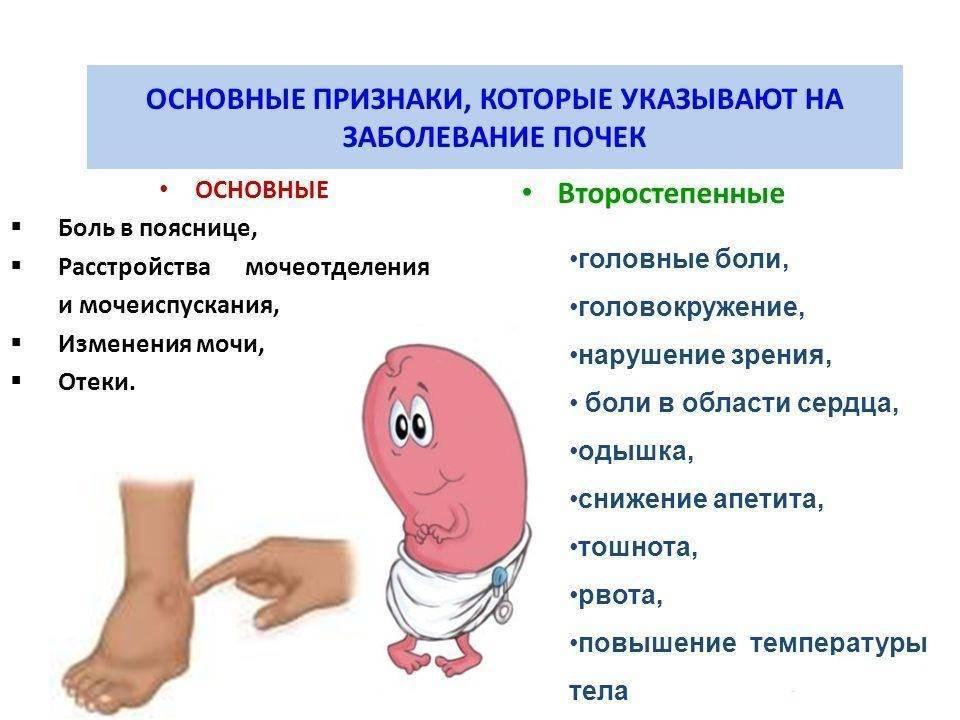 Почечная недостаточность у детей: симптомы, неотложная помощь, лечение, признаки острой и хронической почечной недостаточности у ребенка