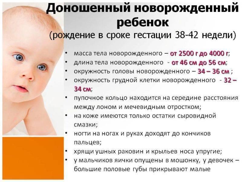 На какой неделе беременности рожают? во сколько недель беременность бывает доношенной и на какой неделе плод считается жизнеспособным?