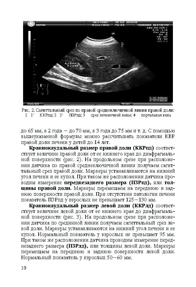 Обследование состояния печени: квр в диагностике заболеваний
