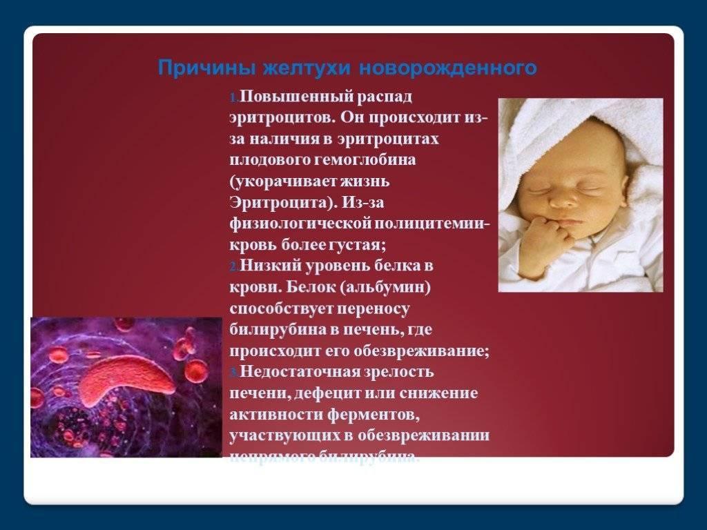 Густая кровь у ребенка: способы лечения и профилактики - мы здоровы!
