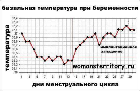 Какая температура тела может быть на ранних сроках беременности