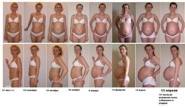 Грудь во время беременности: грудь при берменности: 100 вопросов и ответов, железы монтгомери во время беременности   грудь во время беременности | метки: gjxtve, увеличиваться, начало, не, gjxtve