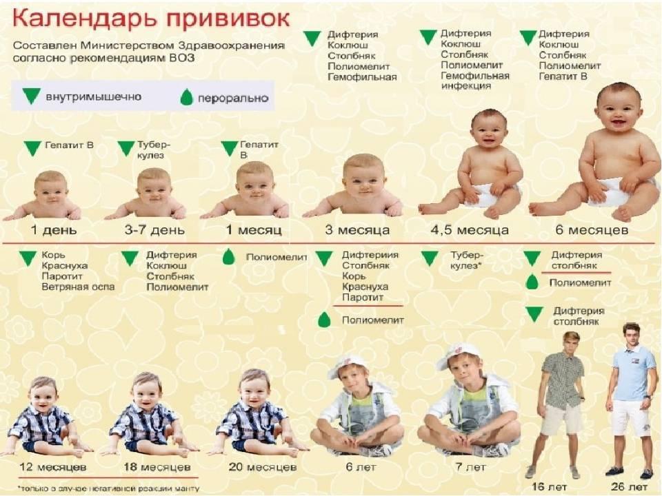 Национальный календарь ? обязательных профилактических прививок для детей — топотушки