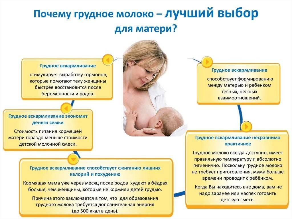 Беременность в период лактации, что делать если наступила беременность во время кормления грудью