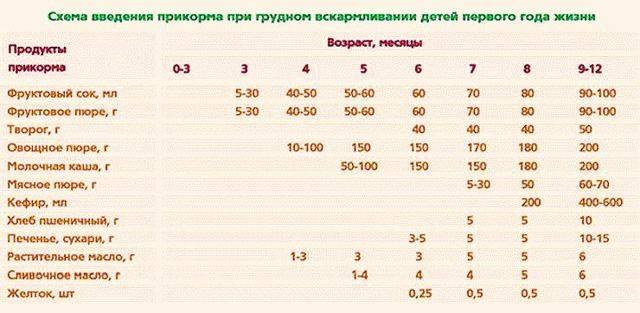 Прикорм при грудном вскармливании: когда вводить, схема первого прикорма, таблица по месяцам / mama66.ru