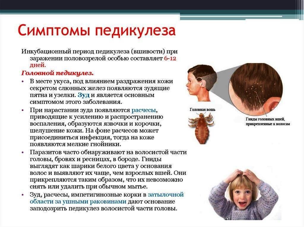 Лишай у ребенка: как понять и что делать для профилактики?