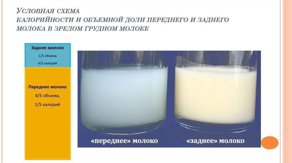 Цвет грудного молока: каким он должен быть и симптомы отклонений