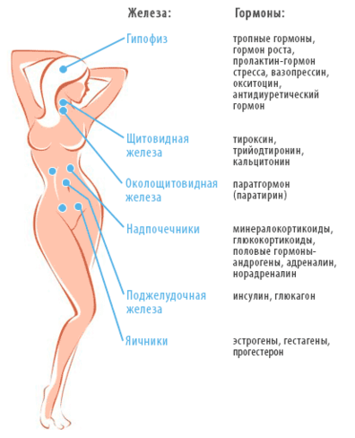 Пониженный тестостерон у женщин при планировании беременности