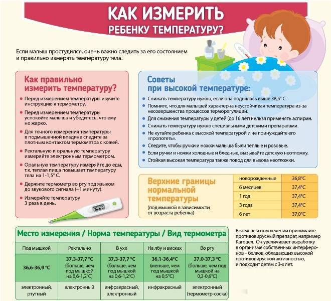Температура у грудничка: норма у младенца, причины и симптомы повышения, жаропонижающие средства для самых маленьких