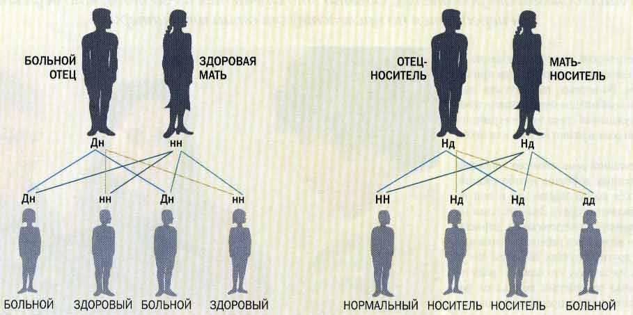При диабете можно иметь детей мужчинам - медицинский портал diabetiku24.ru
