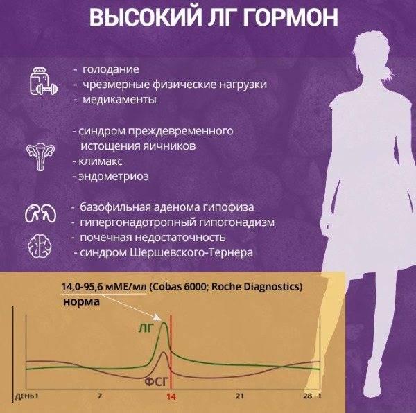 Лютеинизирующий гормон у женщин: норма и функции