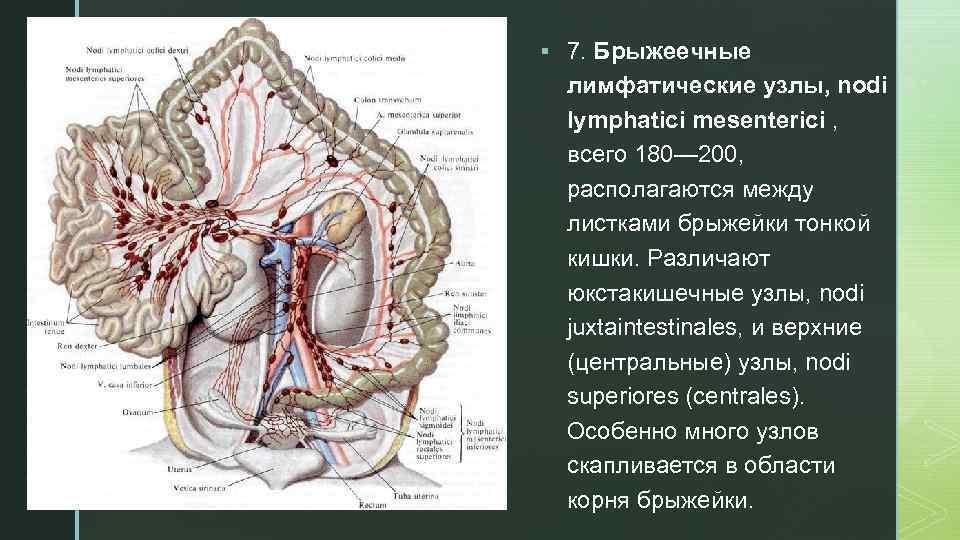 Мезаденит у детей, или острая патология кишечных лимфоузлов