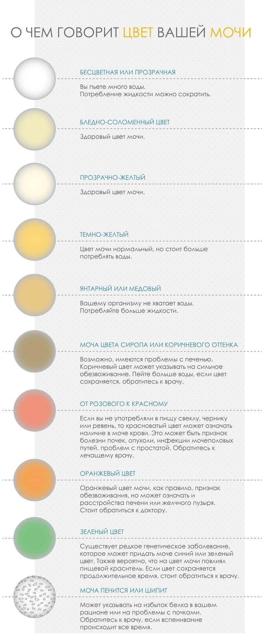 Прозрачная моча: причины почему она светлая или бесцветная как вода