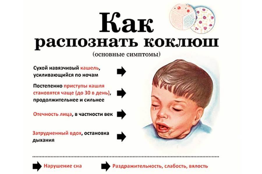 Все о причинах и лечении кашля без простуды у взрослого и ребенка