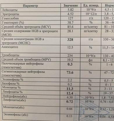 Повышен мснс в анализе крови: причины, что значит повышение mchc у ребенка