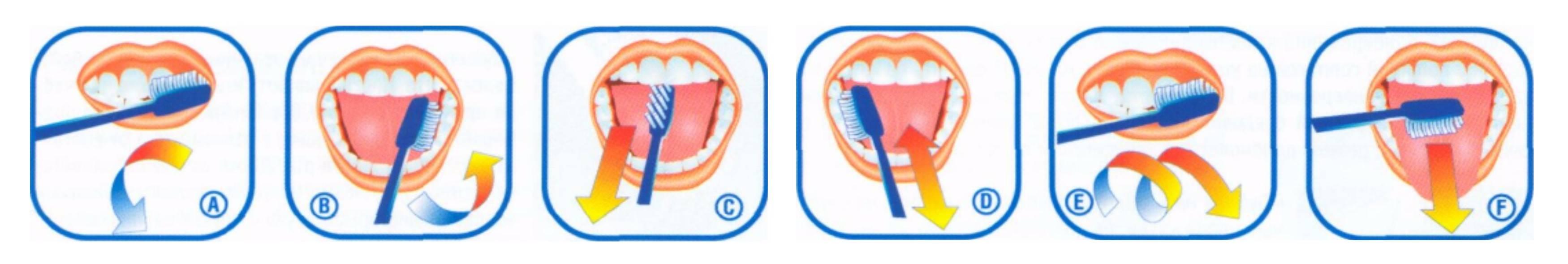 Когда стоит начинать чистить зубы ребенку?