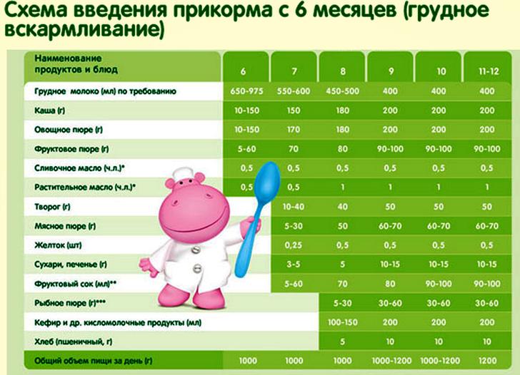 Прикорм помесяцам: правила и рекомендации