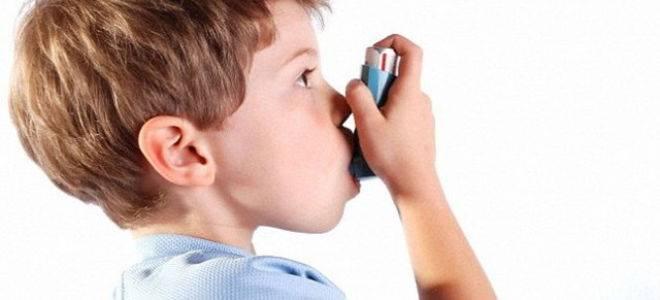 Полипы в пазухах носа: фото и видео, как выглядят полипы в носу, диагностика заболевания