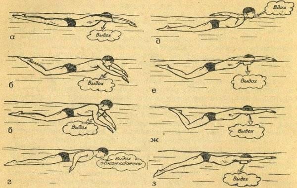 Как научить ребенка плавать с рождения?
