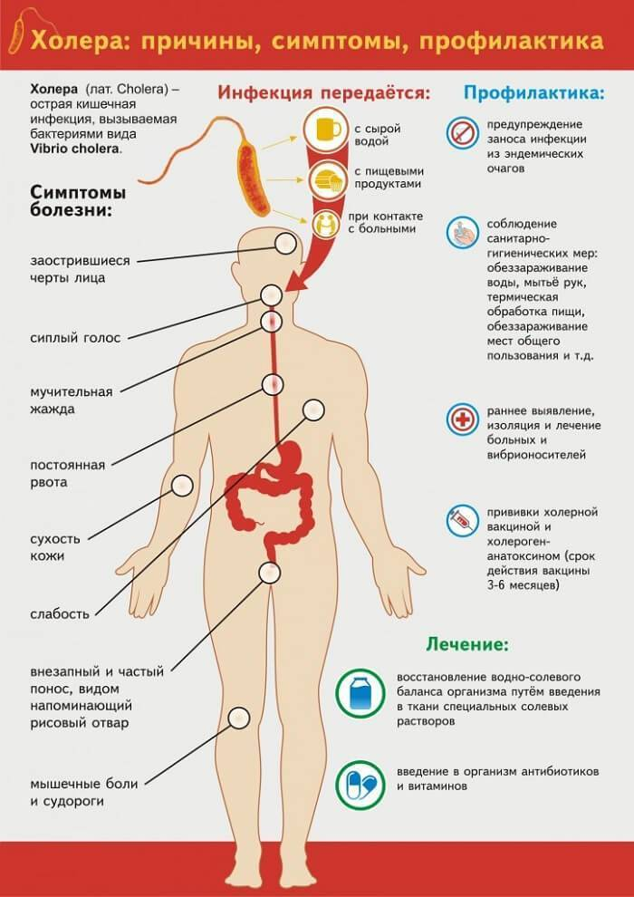 Симптомы иерсиниоза, лечение заболевания у детей и взрослых