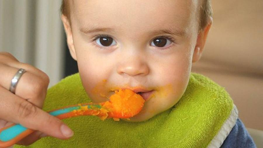 Как научить ребенка жевать твердую пищу: рекомендации родителям