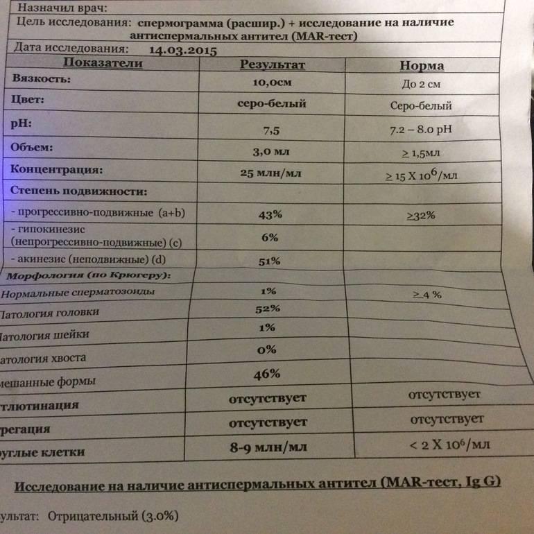 Сроки спермограммы: результаты, нормы показателей, цена