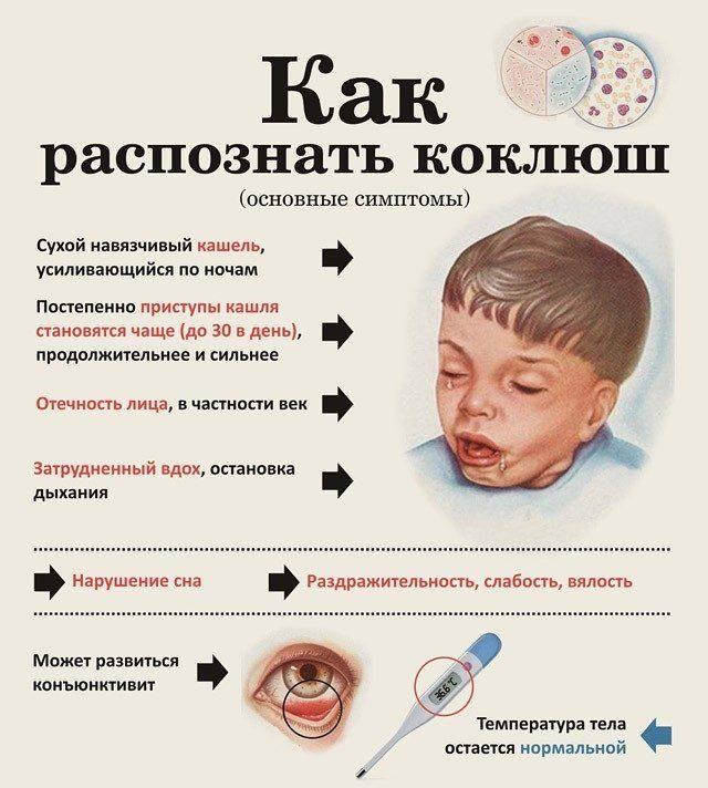 Паракоклюш у детей - симптомы, лечение, анализ на паракоклюш