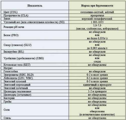 Почечный эпителий в моче - норма и причины появления