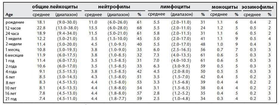 Лимфоциты у ребенка в крови: повышенные и пониженные, о чем это говорит, причины, норма лимфоцитов у ребенка / mama66.ru