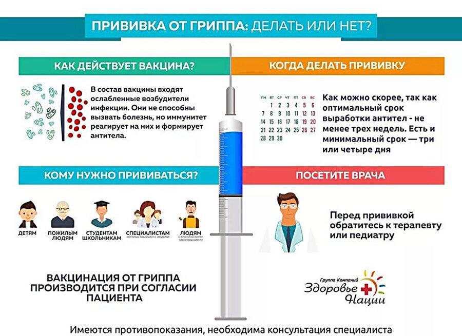 Плюсы и минусы прививки от гриппа: правила вакцинации и противопоказания