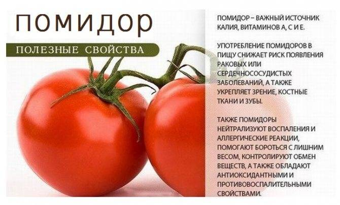 С какого возраста можно давать помидоры и томатный сок детям