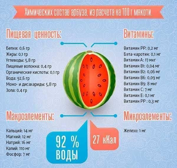 Можно ли детям до года давать арбуз и дыню: оптимальный возраст для введения фруктов в рацион малыша - врач 24/7