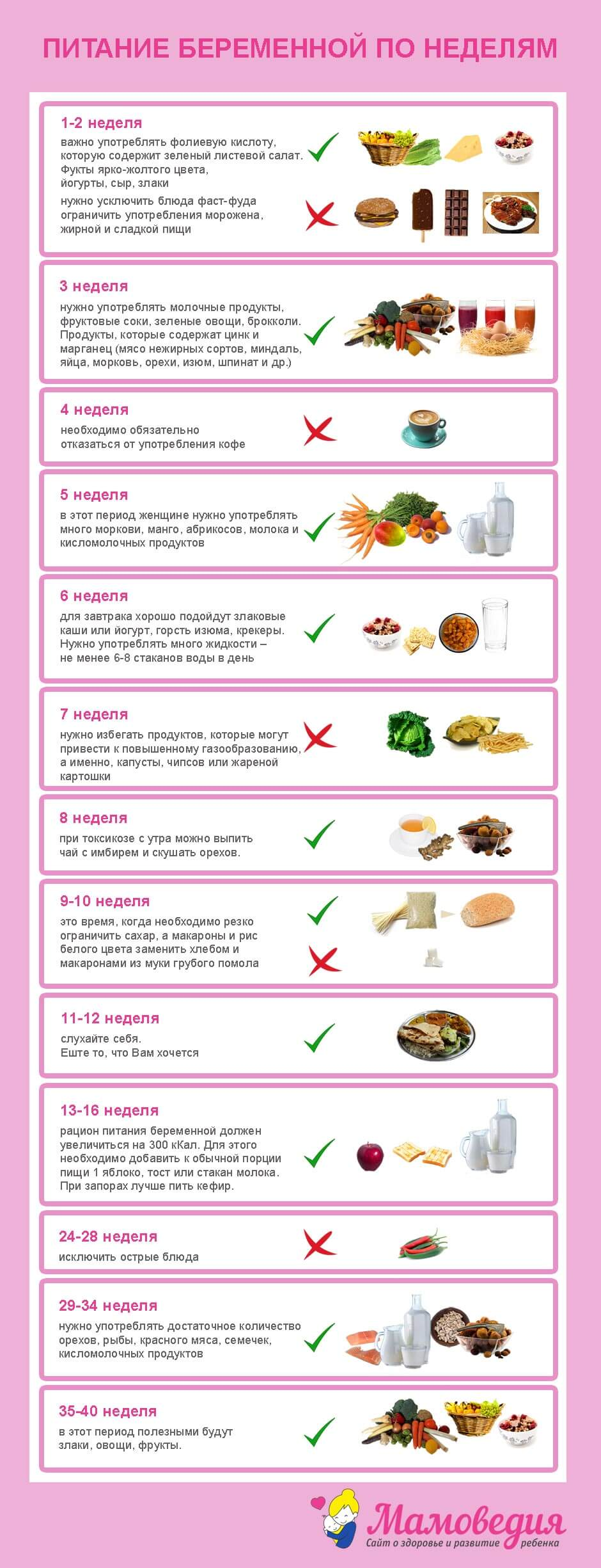Какие фрукты полезны при беременности: нельзя есть мочегонные на ранних сроках