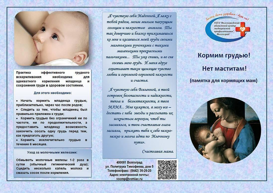 Диета при грудном вскармливании. питание кормящей матери в первый месяц