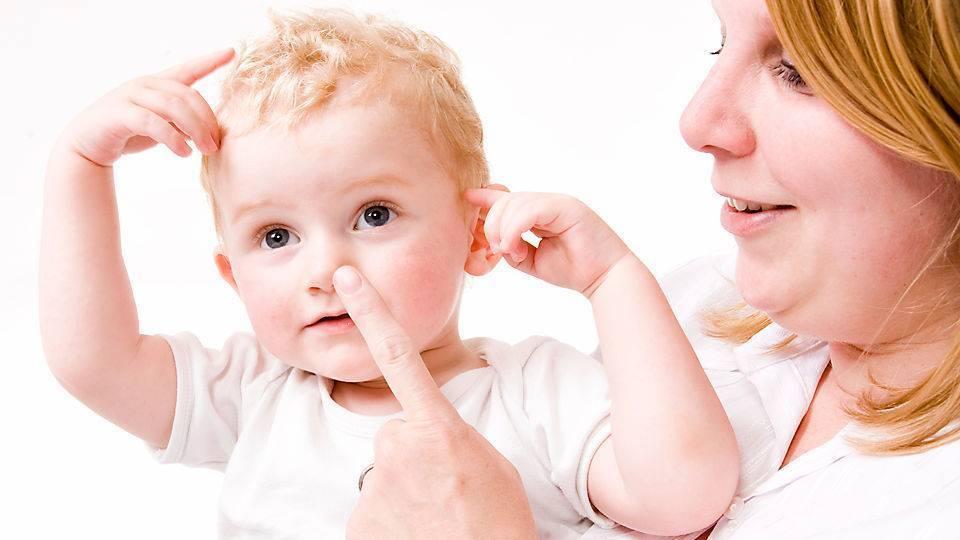 Как ребенка научить сморкаться: основные методики, советы и отзывы