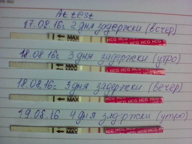 Почему происходит задержка месячных на 10 дней при отрицательном тесте