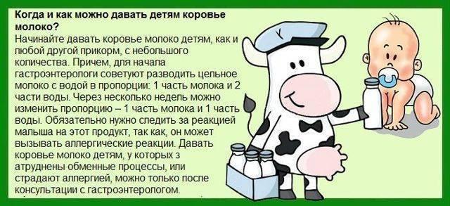 Козье молоко для грудничка: с какого возраста, как давать?