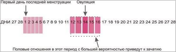 Через сколько дней после месячных можно забеременеть: методы вычисления благоприятных дней зачатия, рекомендации врачей