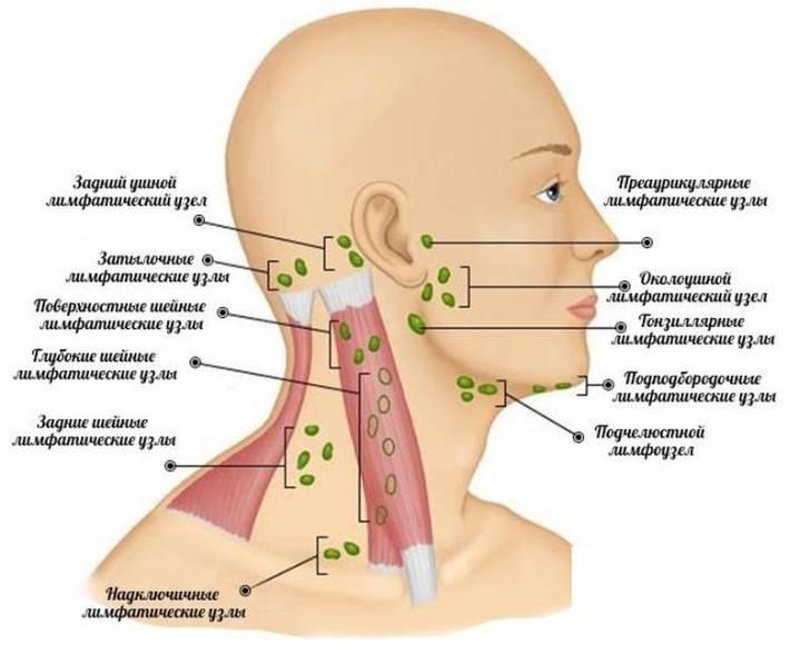 Воспалился лимфоузел за ухом: что делать и чем лечить