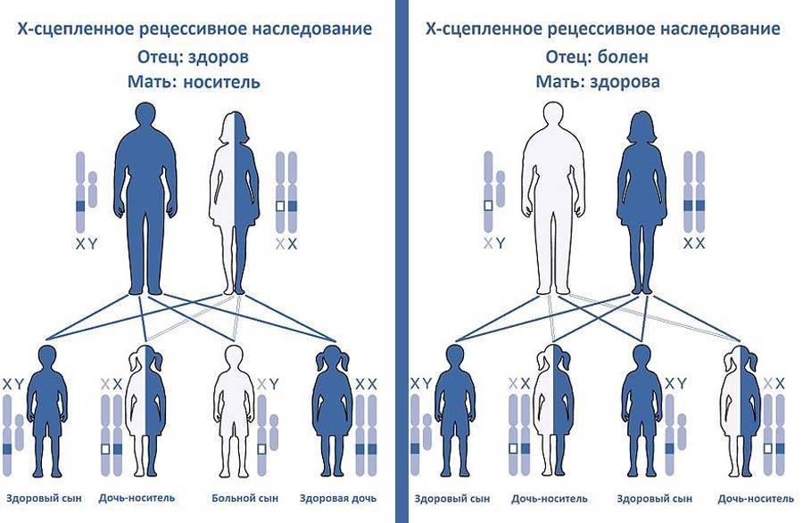 Гемофилия у детей, признаки, клинические рекомендации, лечение