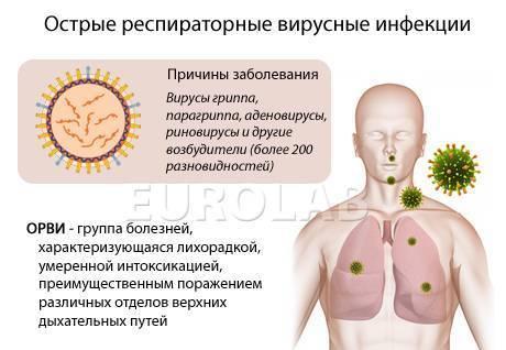 Диагностика и лечение кишечного гриппа у детей, его причины и симптомы