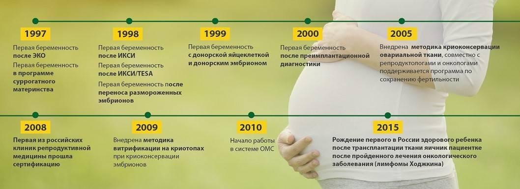 Все, что нужно знать об экстракорпоральном оплодотворении (эко)