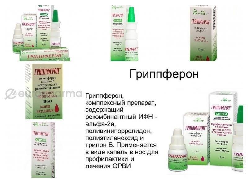 Спрей и капли гриппферон от насморка для детей и взрослых