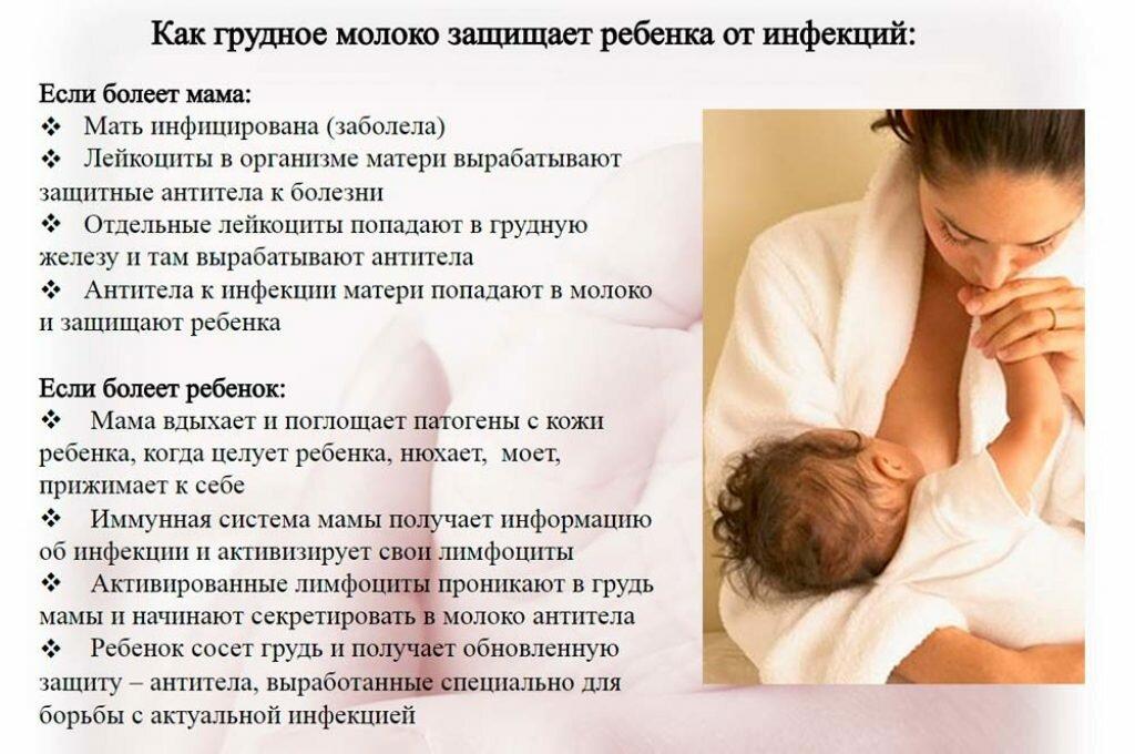 Мало молока у кормящей матери: что делать, чтобы было больше, что нужно кушать? | опыт | vpolozhenii.com