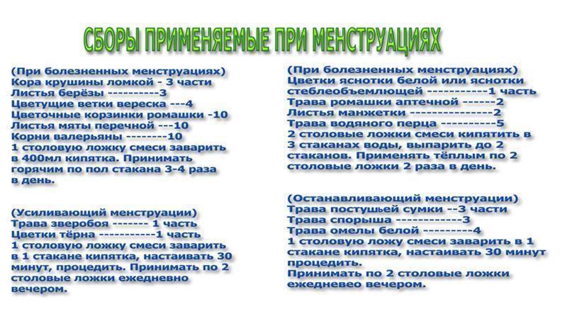 Петрушка для вызова месячных - vseomatki