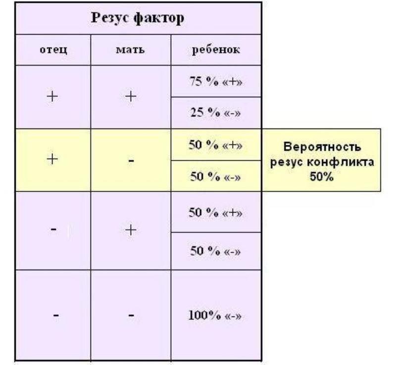 Резус конфликт при беременности (таблица) и несовместимость партнеров при зачатии по группе крови и резус-фактору