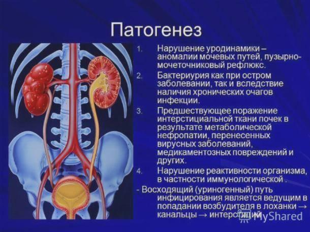 Воспаление почек (нефрит) у детей: симптомы, признаки заболевания у грудничка, лечение
