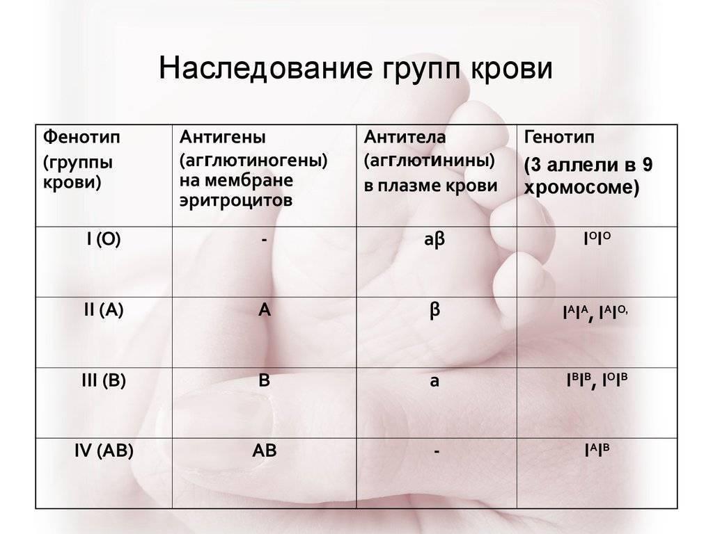 Группы крови и резус-фактор: определение, наследование и совместимость