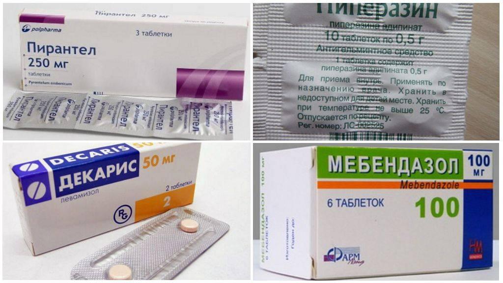 Таблетки от глистов для детей: лекарства, средства и препараты для профилактики и лечения паразитов | препараты | vpolozhenii.com