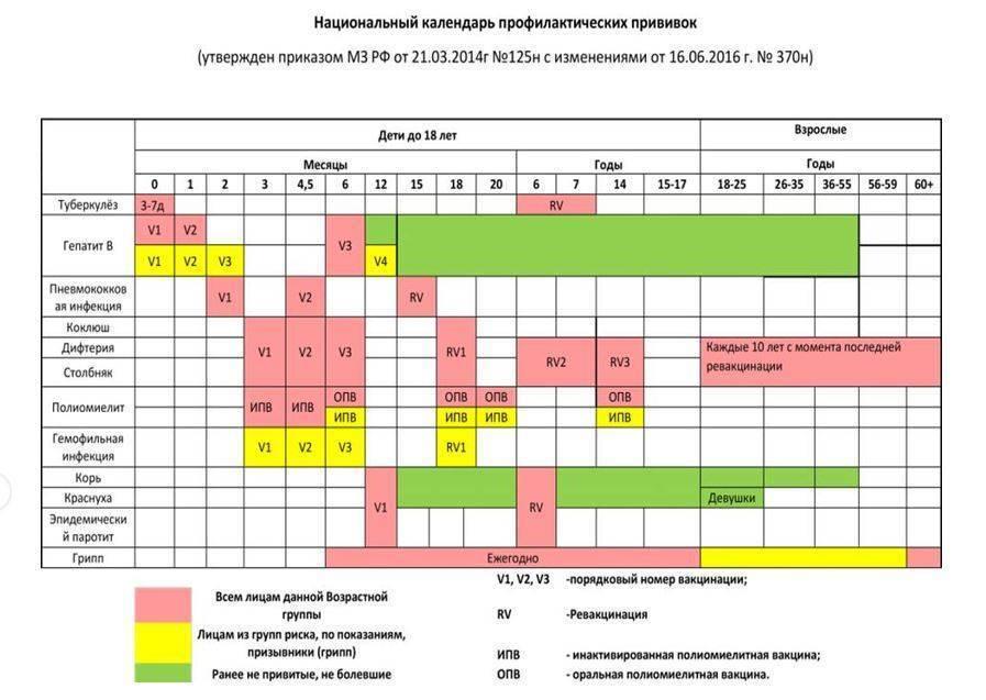 Подробный календарь профилактических прививок